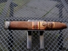 Oliva_V-Melanio-07